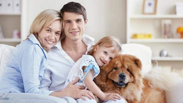 Wills & Trusts dog-young-family Direct Wills Canary Wharf